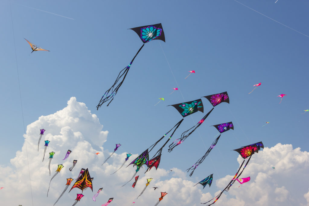 Large-Kites-Flying