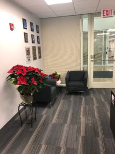Poinsettia-Decoration-Holiday-Office