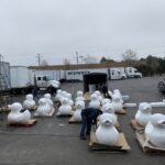 Chicago Office Movers with Unpainted Ducks